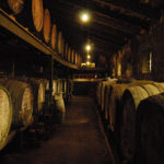 What Are The Oldest Vineyards In France?