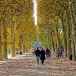 Best Parks to Go For a Run in Paris
