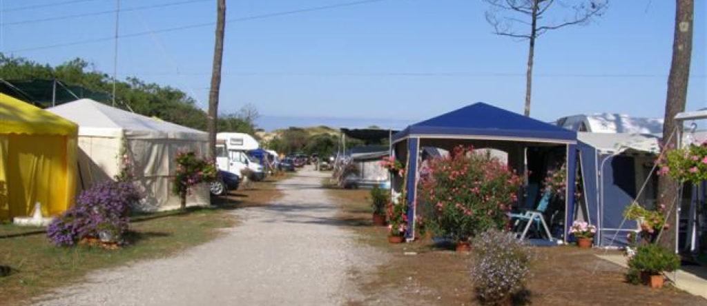 Camping Le Pin Sec france