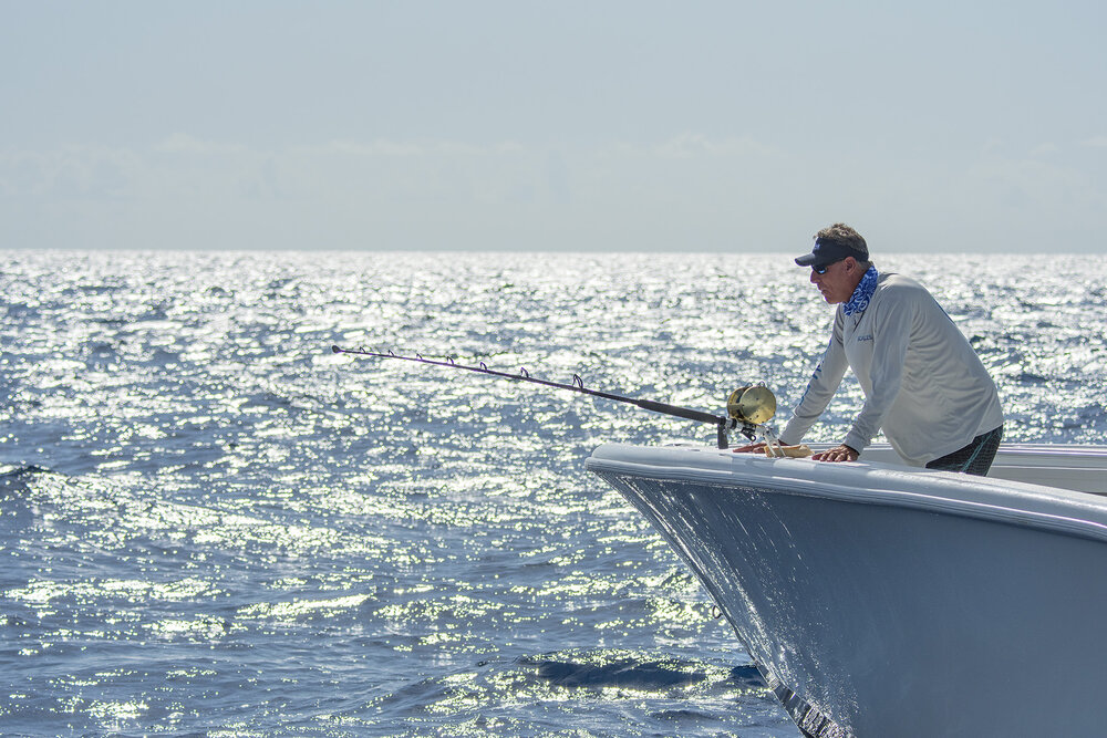 Species to Fish for In the Mediterranean