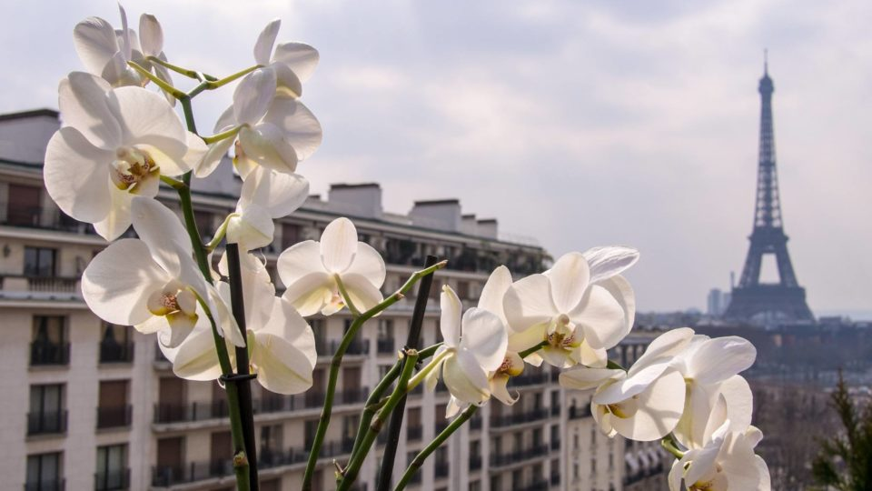 Budget Hotels Near the Eiffel Tower