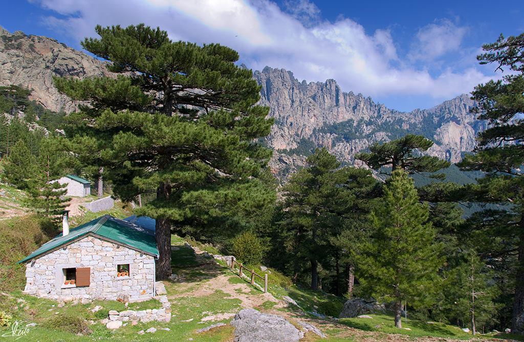 Col de Bavella - Corsica France Worth Visiting