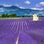 Is Provence Expensive?