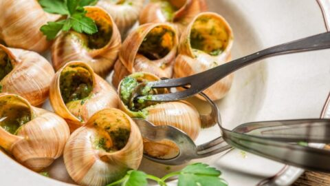 Most Popular Traditional French Dishes